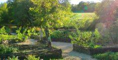 Jardin médiéval de Bonnefont