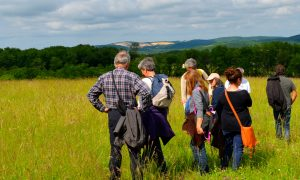 Le Fréchet : Sentier nature & patrimoine