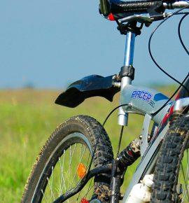 Accueil des vélos